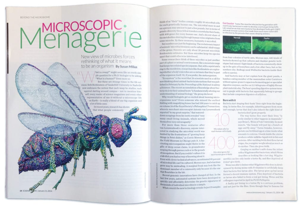 3D microbiome landscape art published in the Science News magazine.