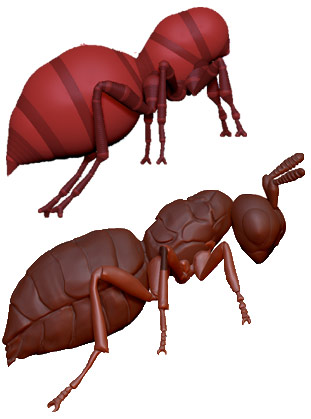 Sculpting the Nasonia wasp in ZBrush to later cover in a 3D microbiome landscape.
