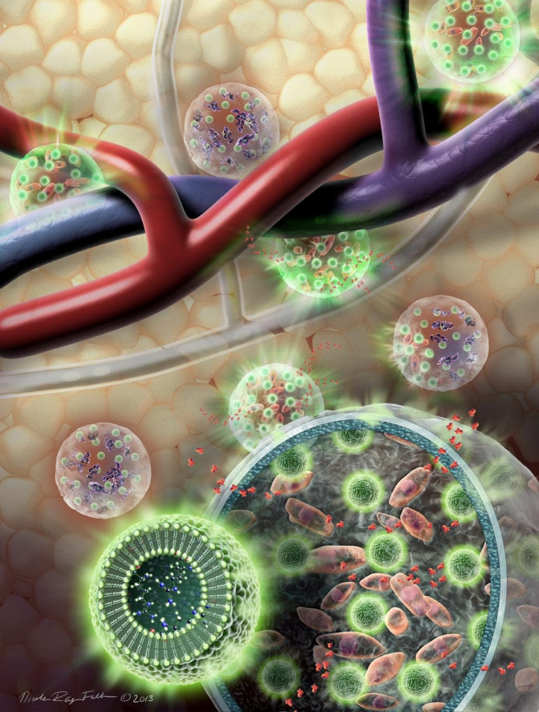Microspheres