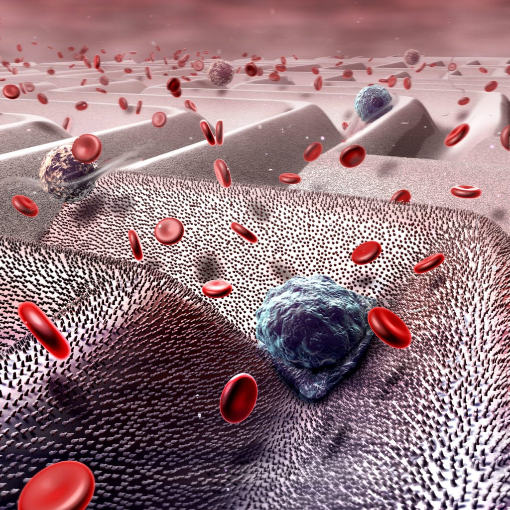 Engineers are designing microchips carpeted with nanotubes which selectively bind cancer cells (blue), while allowing other cells to pass (red blood cells and other immune cells). A blood sample is applied to the chip, and the chip can detect minute amounts of cancer cells. Created for Lehigh University
