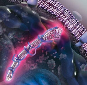 How to Find a Visual Science Communicator, Nanotube at the cell membrane illustration by Nicolle R. Fuller, SayoStudio