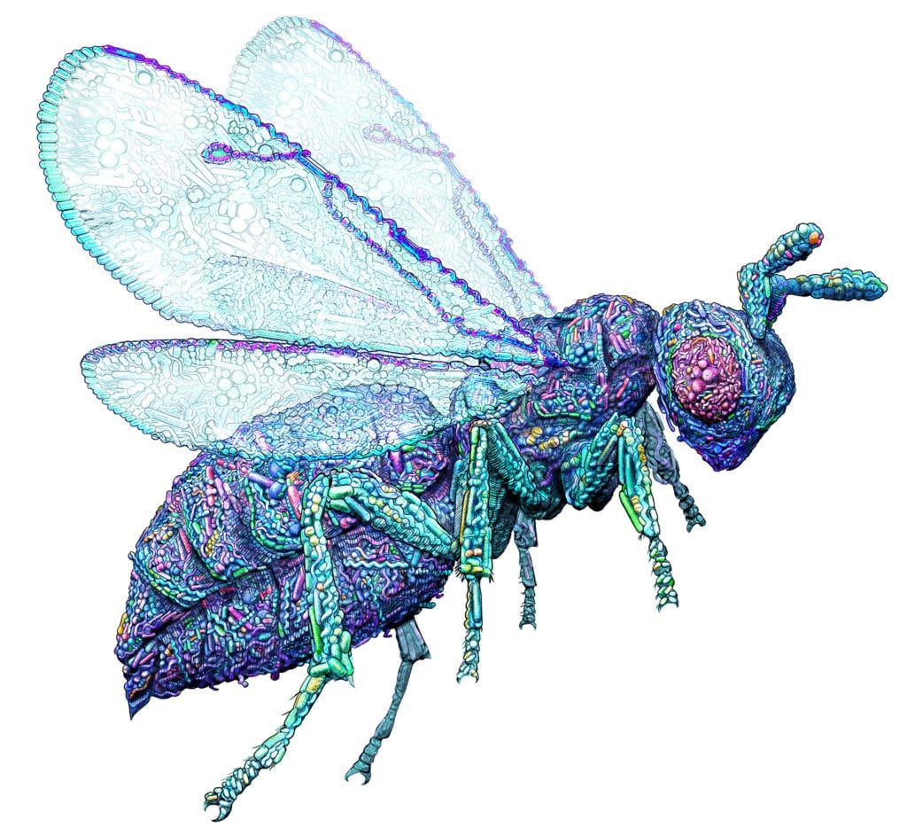 Our bodies are made up of the cells encoded by our unique DNA–right? Current research suggests that the microbes that coexist with us are just as much US, as our 'own' DNA encoded cells. For every one of our DNA encoded cells, 10 microbes exist. This editorial illustration pictures the nasonia wasp, one of the key research subjects, made up of millions of microbes.
