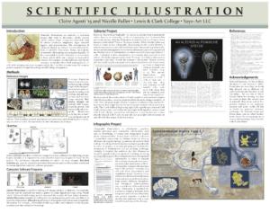SayoStudio website design by Claire Agosti