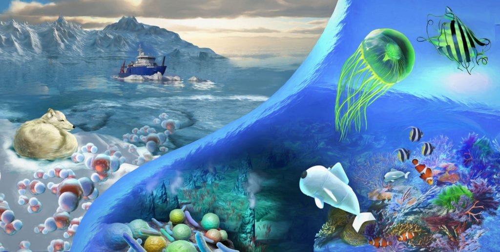 NSF Ocean Research