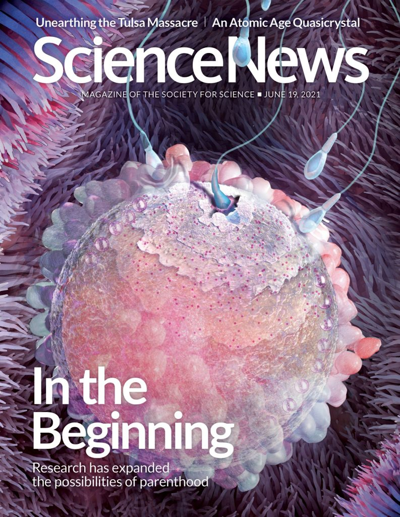 Science magazine cover art of reproductive health, showing sperm entering egg by Nicolle R. Fuller SayoStudio