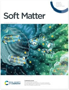 Drug delivery with colloidial gel illustration for Soft Matter, a Royal Society of Chemistry Cover. By Nicolle R. Fuller, SayoStudio