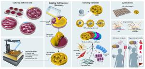 Cell imprinting bioengineering illustrated graphic science figure, by SayoStudio