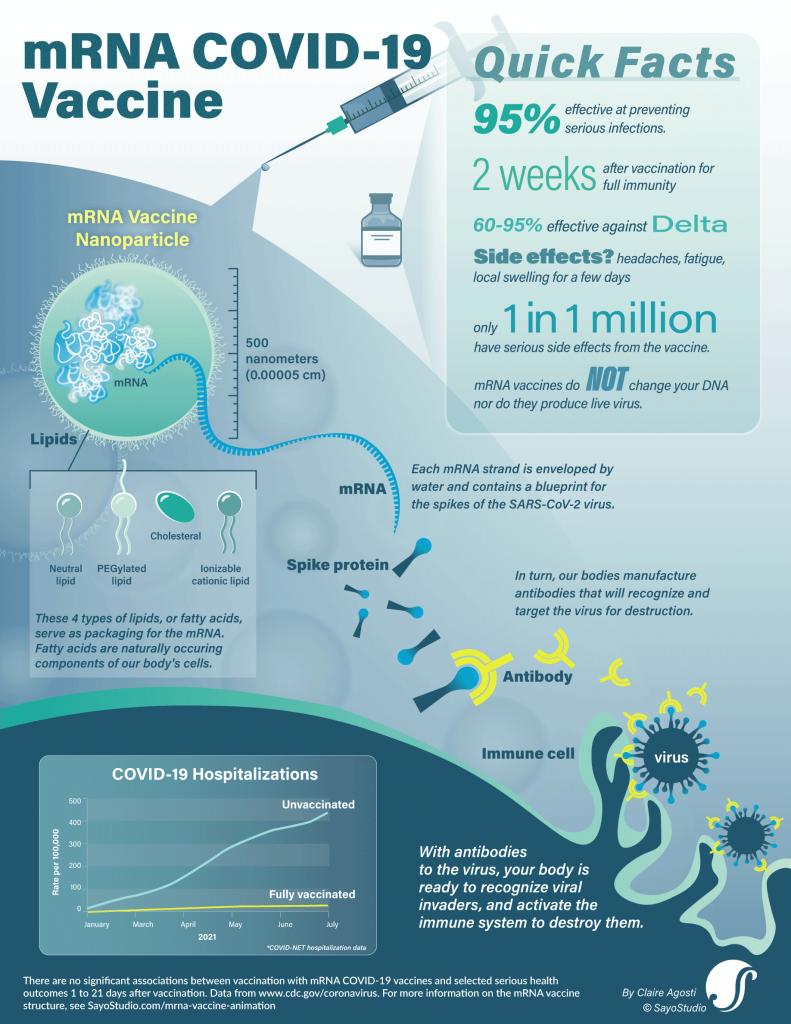 COVID-19 mRNA vaccine infographic fact sheet designed by SayoStudio